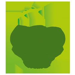 100% ecologisch